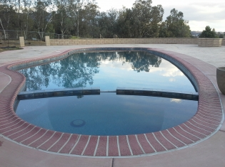 Freeform Pool with Level Spa