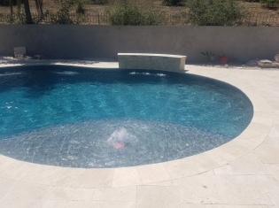 Freeform Pool with Tanning Ledge and Raised Wall